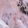 Close-up of Yellowstone River\'s Pastel Cliffs with Trees, 192